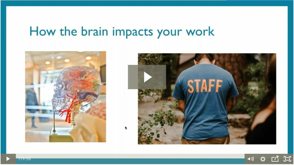 What Nonprofit Leaders Need to Know About the Brain